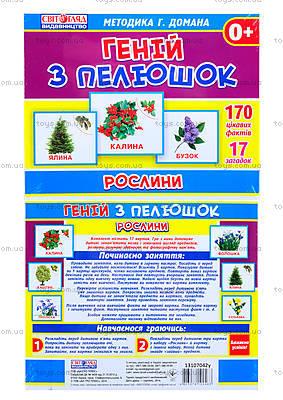 Демонстрационные карточки «Растения», 1014-213107042У