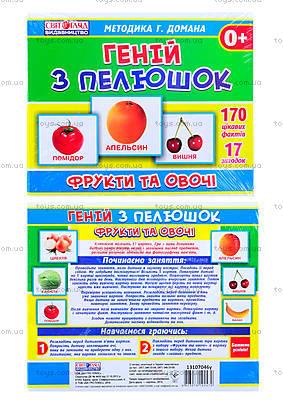 Обучающая игра «Фрукты и овощи», 1017-2