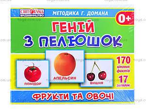 Обучающая игра «Фрукты и овощи», 1017-2, фото