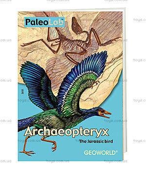Лаборатория юного палеонтолога «Археоптерикс», CL143K, купить