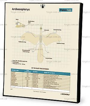 Лаборатория юного палеонтолога «Археоптерикс», CL143K, отзывы