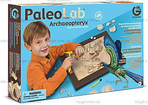 Лаборатория юного палеонтолога «Археоптерикс», CL143K