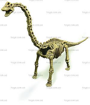 Набор Geoworld Дино-раскопки «Брахиозавр», CL121K, купить