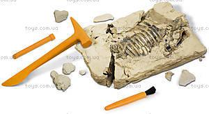 Набор Geoworld Дино-раскопки «Брахиозавр», CL121K, фото