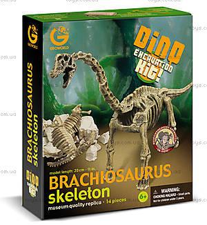 Набор Geoworld Дино-раскопки «Брахиозавр», CL121K