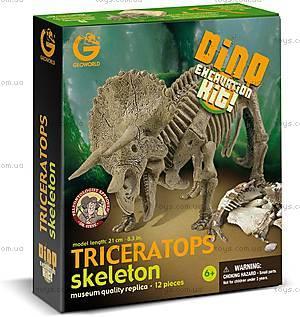 Раскопки динозавров «Скелет Трицератопса», CL122K