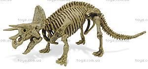 Раскопки динозавров «Скелет Трицератопса», CL122K, купить
