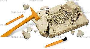 Раскопки динозавров «Скелет Трицератопса», CL122K, фото