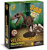 Набор Geoworld Дино-раскопки «Велоцираптор», CL119K, купить