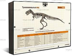 Игровой набор юного палеонтолога «Тиранозавр Рекс», CL145K, игрушки
