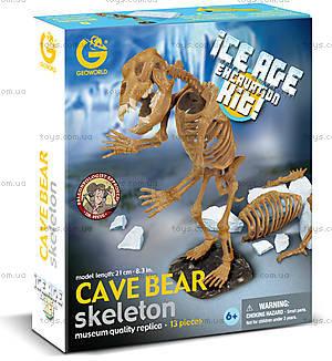 Набор Geoworld «Ледниковый период. Пещерный медведь», CL137K