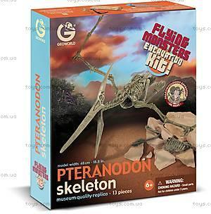 Игровой набор «Скелет Птеранодона», CL262K