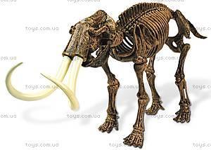 Игровой набор юного палеонтолога «Трицератопс и Мамонт», CL167K, купить