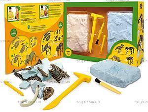 Игровой набор юного палеонтолога «Трицератопс и Мамонт», CL167K