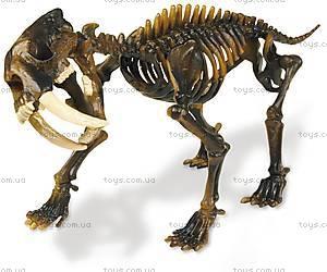 Игровой набор юного палеонтолога «Ти-Рекс и Саблезубый тигр», CL166K, купить