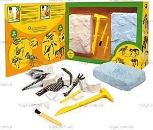 Игровой набор юного палеонтолога «Ти-Рекс и Саблезубый тигр», CL166K, фото