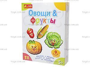 Гипс на магнитах «Фрукты и овощи», 4004