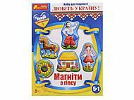 Гипс на магнитах «Украина», 4140, отзывы