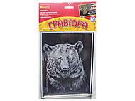 Царапка-гравюра «Медведь», 7017-51, купить
