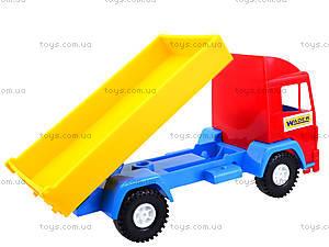 Детский грузовик Mini truck, 39209, купить