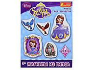 Гипс на магнитах Дисней «Принцесса София», 4023, детские игрушки