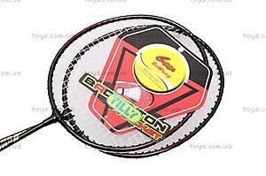 Игровой бадминтон с ракетками, BT-BPS-0006, фото