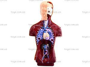 Игровой набор Doctor Set, 2982, toys.com.ua