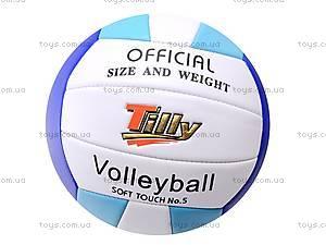 Игровой волейбольный мяч, BT-VB-0029, купить