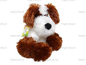 Игрушечная собака «Дружок», 12.08.00, цена