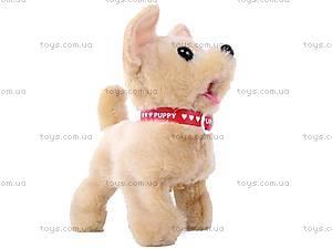 Игрушечная собака на поводке, 9111B, купить