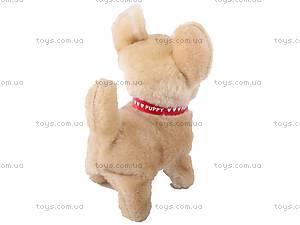 Игрушечная собака на поводке, 9111B, цена