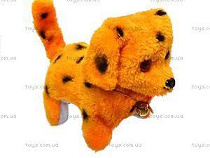 Игрушечное животное «Собачка», L228, купить