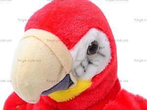 Игрушечный говорящий попугай, CL1192A, отзывы