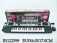 Игрушечный орган с микрофоном, MQ827USB, фото