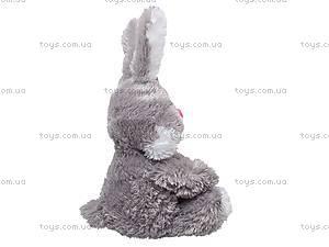 Игрушечный заяц «Ушастик», 11.03.02, фото