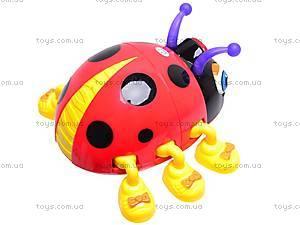 Игрушка для детей «Жучки», 82721ABCD, магазин игрушек
