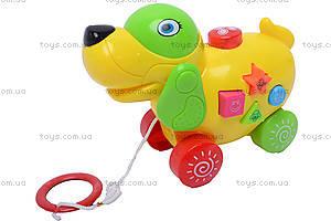 Игрушка-каталка, музыкальная, 3005/06/07/08, детские игрушки