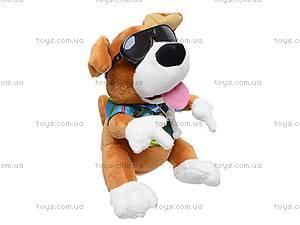 Игрушка «Собачка-повторюха», CL1505B, отзывы