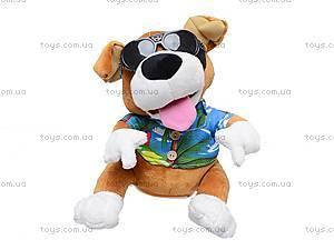 Игрушка «Собачка-повторюха», CL1505B, детские игрушки