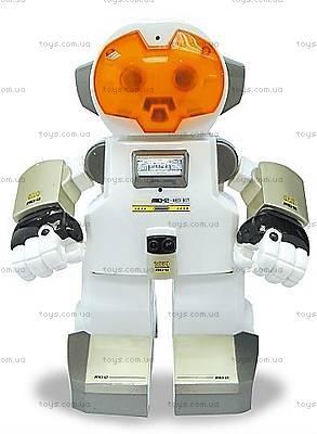 Интеллектуальный робот ECHO, S88308