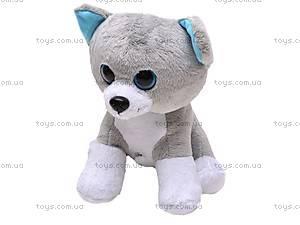 Интерактивная игрушка «Собака или Кошка», 9105R