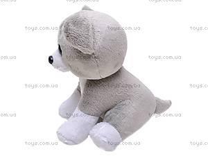 Интерактивная игрушка «Собака или Кошка», 9105R, фото
