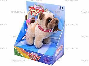 Интерактивная собака на поводке, 9118D1, фото