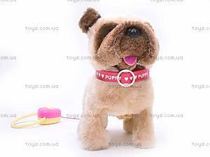 Интерактивная собака на поводке, 9118D1, детские игрушки