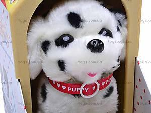 Интерактивная собака с будкой, 9101C/9105C, купить