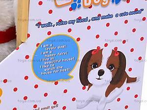 Интерактивная собака с будкой, 9101C/9105C, цена