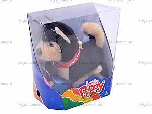 Интерактивная собака с поводком, 9119E1, купить