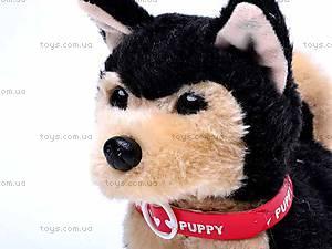 Интерактивная собака с поводком, 9119E1, цена