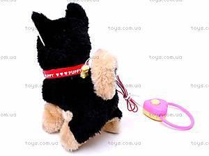 Интерактивная собака с поводком, 9119E1, игрушки