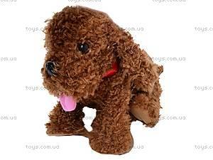 Интерактивная собака «Веселые друзья», CL1186B, фото